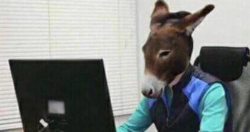 Le Fardeau de l'âne ou comment on se fait tous manipuler