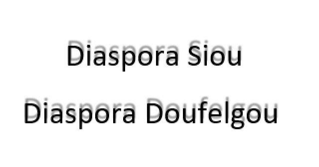 La diaspora de Siou/ Doufelgou ne comprend pas les propos discourtois de Gilbert Bawara