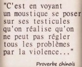 Proverbes chinois authentiques